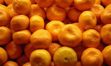В Измаил завезли заражённые мандарины