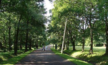 В Измаиле появится новая парковая зона