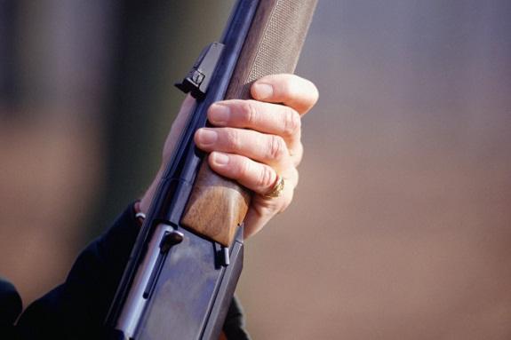 В Тарутинском районе пьяный мужчина расстрелял дом неприятельницы