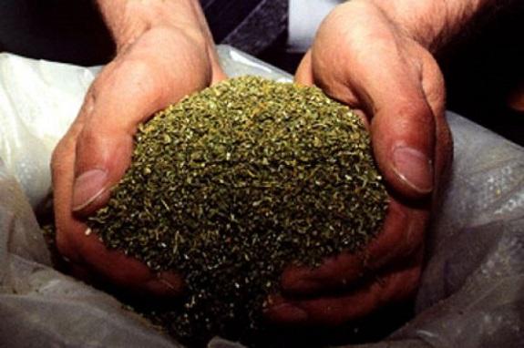 В Тарутинском районе на хранении наркотиков попался пенсионер