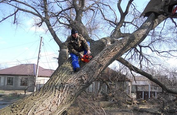 В Болградском районе борются со стихией (ФОТО)