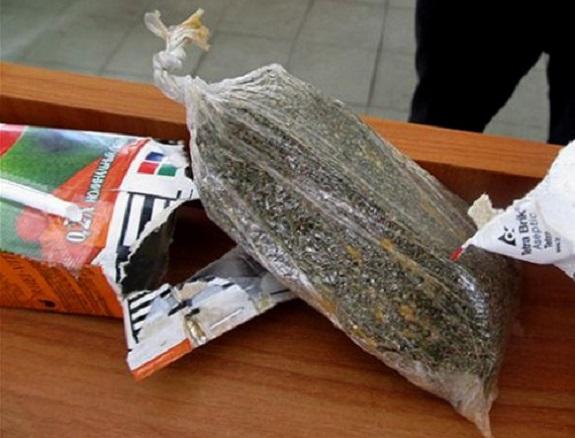 Измаильские пограничники нашли в рейсовом автобусе из Молдавии два пакета с марихуаной