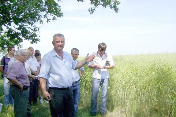 В Болградском районе готовятся к уборке ранних культур (ФОТО)