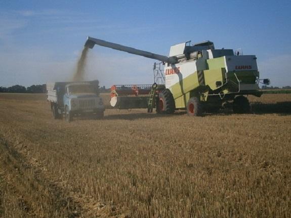 34 Аграрии Бессарабии вырастили прекрасный урожай зерновых культур