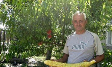 Житель Измаильского района вырастил гигантский огурец