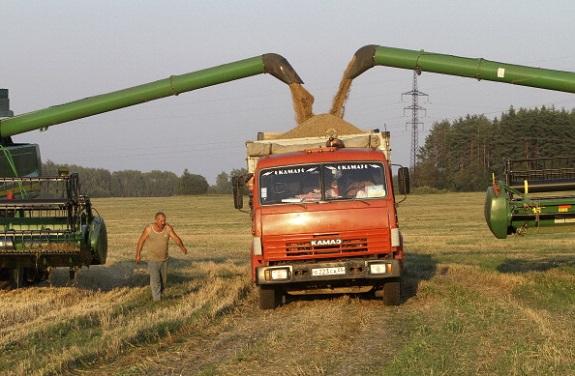 В Сарате конфисковали 29 тонн контрабандного зерна