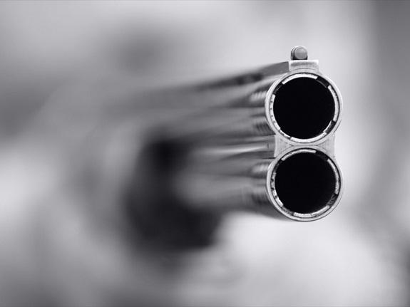 Житель Измаильского района пытался застрелить свою жену
