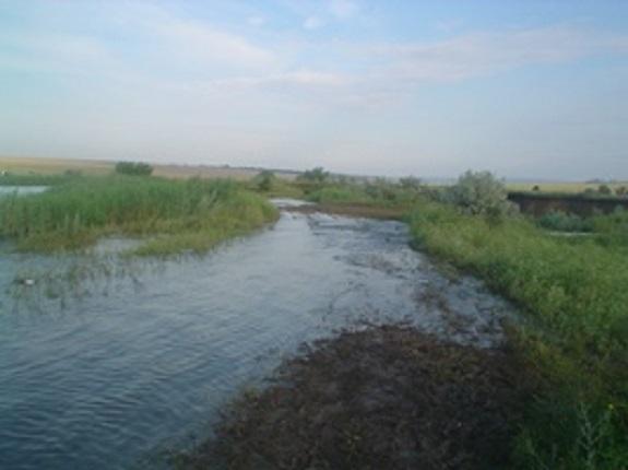 Из-за прорыва дамбы затопило Саратский район (обновлено)
