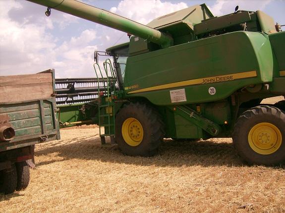 В Арцизском районе убрали более 70% урожая — чиновник (ФОТО)
