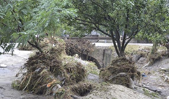 В Тарутинском районе стихия разрушила 53 дома и детский садик — Матковский (ФОТО)