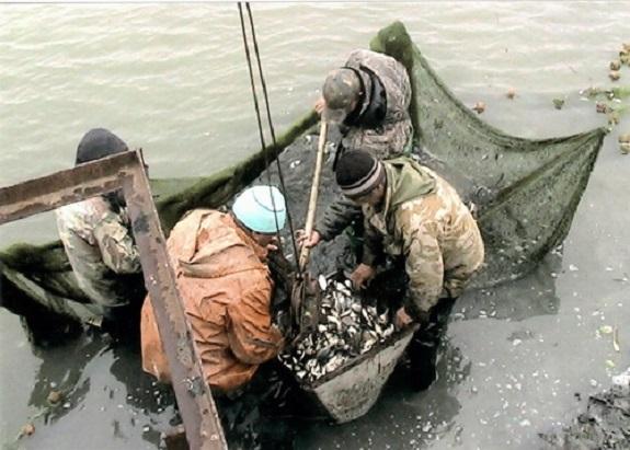 В Измаильском районе озёра заселили рыбой