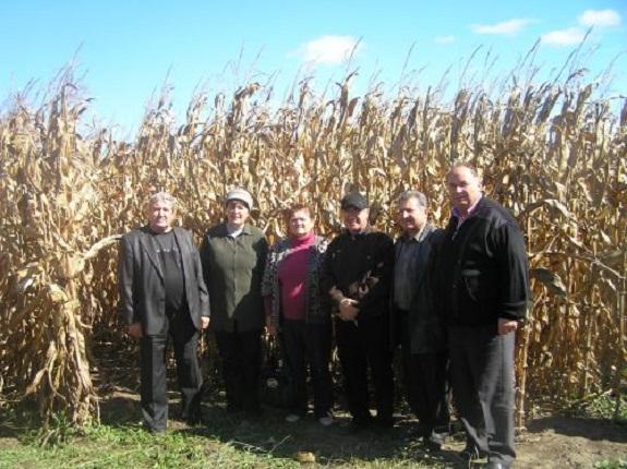 В Килийском районе изучили новые технологии выращивания кукурузы