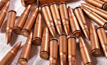 У жителя Тарутинского района обнаружили целый арсенал патронов