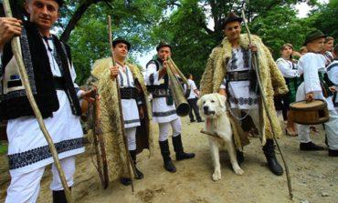 Велика меншість. Українські румуни майже не зазнали асиміляції