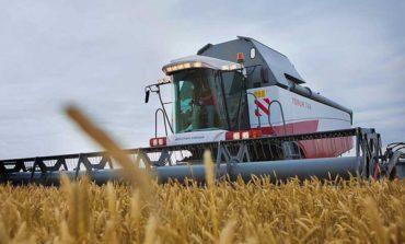 В Одесской области прогнозируют рекордный урожай