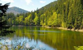 В Одесской области намерены увеличить площадь природно-заповедного фонда