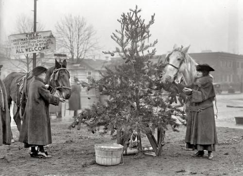 Рождественское дерево в нач. 20 века