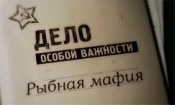 Блеск и нищета живого серебра Придунавья (ч.2)