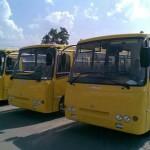 купят автобусы