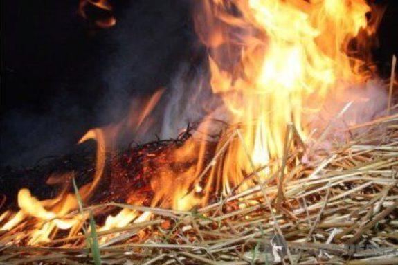 В Одесской области из-за детских шалостей сгорело 4 тонны сена