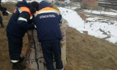 В Беляевском районе трехлетний ребенок упал в колодец