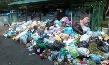 Во Львове мусор не вывезен с 25% контейнерных площадок