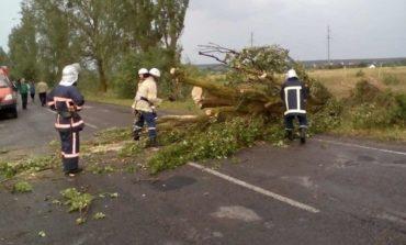 От непогоды в Украине пострадали 17 человек