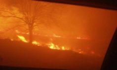 На трассе под Измаилом сжигание стерни и густой дым чуть не привели к аварийной ситуации (ФОТО)