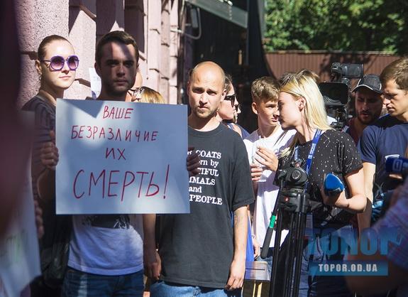 Одесские зоозащитники требуют прекратить бесчеловечную эксплуатацию животных в коммерческих целях
