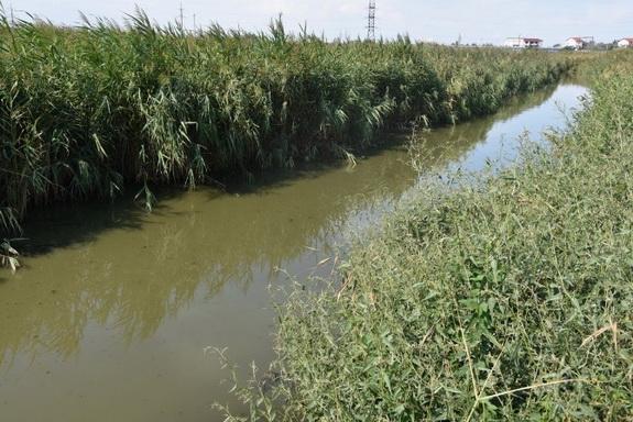 В Украине определили самые загрязненные реки