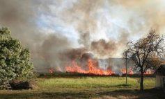 Масштабный пожар в Одесской области: горят плавни
