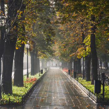 33 кадра осенней Одессы (ФОТО)
