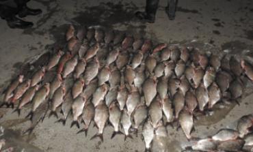 На озере Кагул задержали браконьеров с крупным уловом