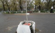 В соцсетях возмущены вандализмом на улицах Арциза