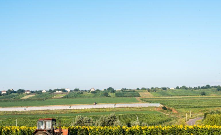 ЕС поддержит украинский аграрный сектор новой инициативой Европейского инвестиционного банка