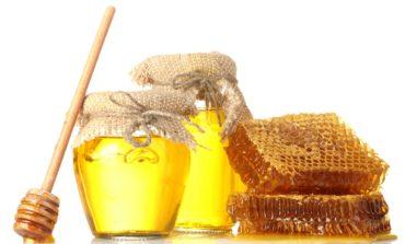 Пчеловоды стран Черноморского региона объединяют усилия в поиске новых рынков сбыта продукции