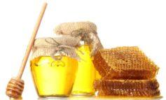 Украина экспортировала меда почти на 25 тысяч долларов
