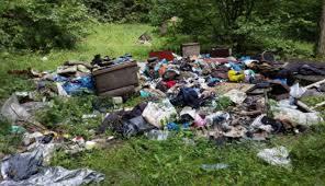 По периметру свалки Шабской ОТГ Белгород-Днестровского района высадят деревья, а в селе проведут «Вербный пикник»