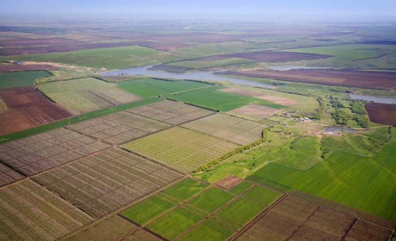 В Украине количество зарегистрированных земельных сделок превысило 6 тысяч