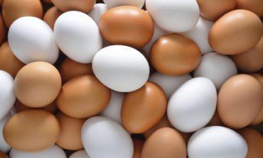 Украина за 2017 год экспортировала 88,6 тысяч тонн яиц