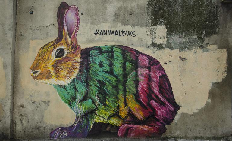 В Одессе появилось новое граффити с животным