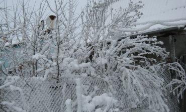 Непогода в Арцизском районе: школьникам продлили каникулы до конца недели