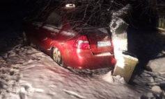 Под Измаилом таксист слетел со скользкой дороги и врезался в дерево (ФОТО)
