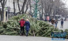На Дерибасовской разобрали новогоднюю елку (фотофакт)