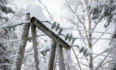 В Вилково отключили воду из-за налипания снега