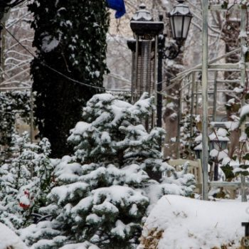 Одесса во власти снега (ФОТО)