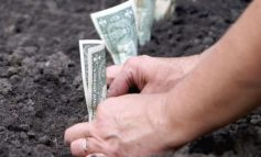 В Раздельнянском районе предприниматель обманул государство на 2 млн гривен