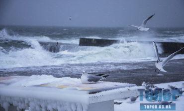 Бушующее Черное море покрывается слоем льда (фото)