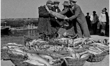 Куда «ушла» рыба из Днестровского лимана?