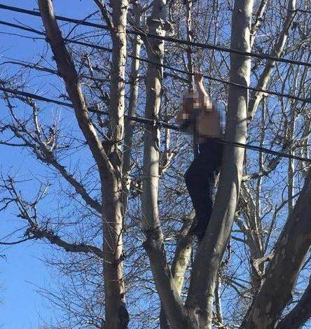 В Одессе мужчина пытался повеситься на дереве